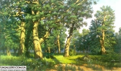 Копия картины Шишкина «Дубовая роща»