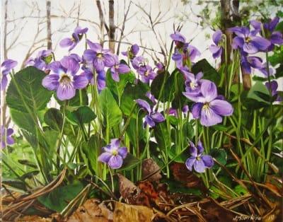 Картина цветы «Фиалки в лесу» купить живопись для современных интерьеров Украина