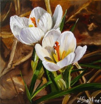 Картина цветы «Первоцветы. Крокусы» купить живопись для современных интерьеров Украина
