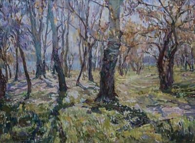 Картина маслом пейзаж природа «Сквозь лучи солнца» купить живопись для современных интерьеров Украина