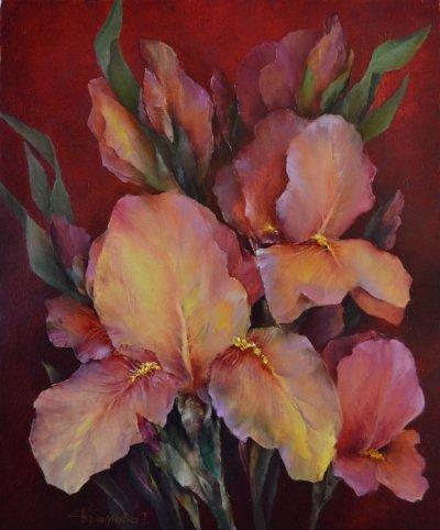 Картина цветы «Ирисы на красном» купить живопись для современных интерьеров Украина