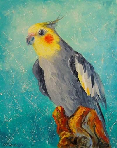 Картина «Попугай корелла»