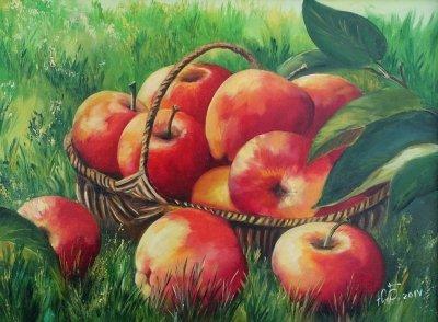 Картина маслом «Яблоки» купить современную живопись Украина