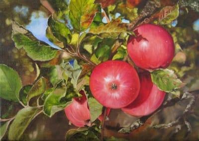 Картина «Красные яблочки»